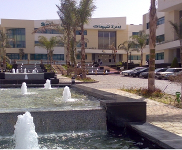 Rehaab Sales Center Entrance Water Feature, Cairo, Egypt